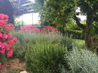 Jardinería en Baix Llobregat, Barcelona Jardines de estilo moderno de De buena planta Moderno