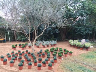 Jardín en Sant Cugat, Barcelona Jardines de estilo mediterráneo de De buena planta Mediterráneo