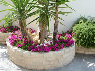 Mediterranean style gardens by Trani Gold Stone - la pietra di Trani Mediterranean