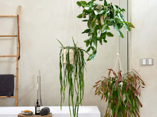 Pflanzenfreude.de BathroomDecoration