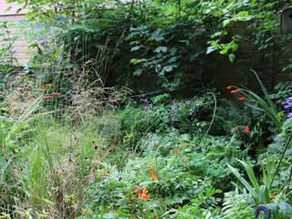 Studio Tuin Rustieke tuinen van Andrew van Egmond (ontwerp van tuin en landschap) Rustiek & Brocante