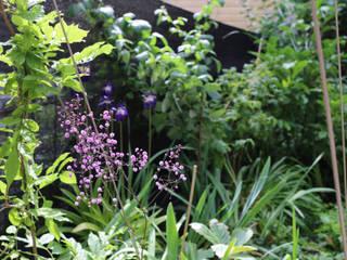 Andrew van Egmond (ontwerp van tuin en landschap) Rustic style garden