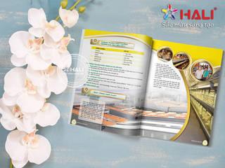 Thiết kế profile Công ty IDB bởi Thiết kế catalogue