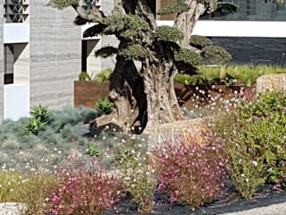 casa da quinta: Jardins  por Mundo Verde, Lda