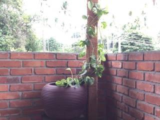 Varandas, alpendres e terraços tropicais por Studio Nirvana Tropical