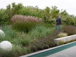 Moderne tuinen van Andredw van Egmond | designing garden and landscape Modern