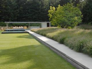 Trunk cathedral Andredw van Egmond | designing garden and landscape Minimalist style garden