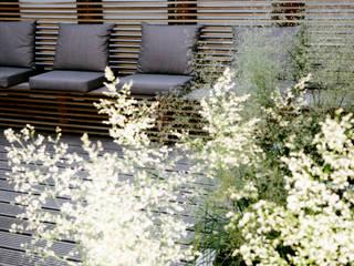 Modern gym by Andredw van Egmond | designing garden and landscape Modern