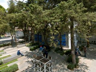 Teloram: Jardines en la fachada de estilo  por IN - OUT ARQUITECTURA