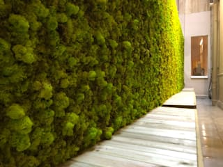 Nosaltres Toquem Fusta S.L. Interior landscaping