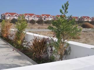 Benid Mimarlık Bürosu – İskele Boğaz Villa Mare-Villa Mona:  tarz Evler,