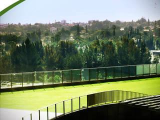 Centros comerciales de estilo moderno de Pasto Sintético Guadalajara Moderno