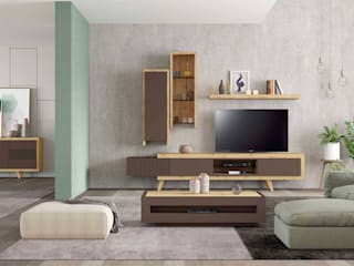 Intense mobiliário e interiores Living roomShelves