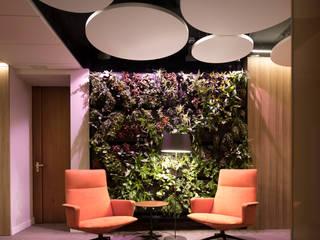 Oficinas de estilo moderno de AIR GARDEN Moderno