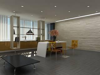 Ukrayna/Ofis AÇI PROJE MİM. İNŞ. Modern