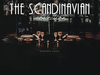MPdrink® UNBREAKABLE Dishes: scandinavian  by MPdrink, Scandinavian