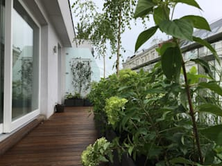 Balcones y terrazas modernos de Miejskie Ziele Moderno