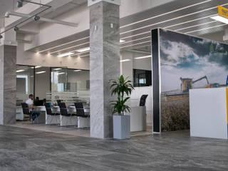 Офис компании Vadalex: Офисные помещения в . Автор – A Studiya by Elena Agafonova