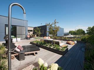 Ontwerp dakterras Knokke van Studio REDD exclusieve tuinen Modern