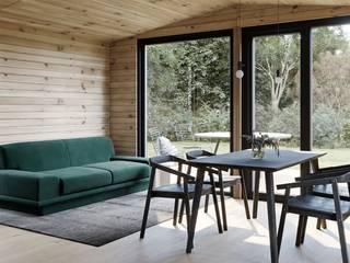 Модульный деревянный дом 53 кв.м Гостиная в скандинавском стиле от Module dom Скандинавский