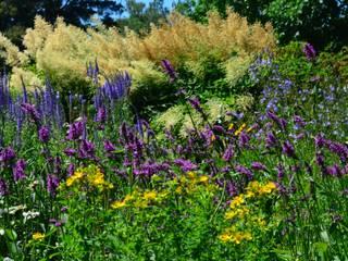 Jardines de estilo moderno de Aster Garden Moderno