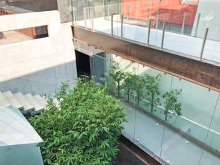 CASA HABITACIÓN BOSQUES DEL MOLINO: Terrazas de estilo  por AM MAS ARQUITECTOS