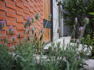 Modern Garden by Arturo Santander Arquitectos Modern