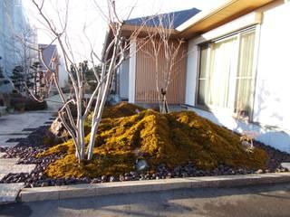 富士山麓の自然を表現した苔庭 アジア風 庭 の 富士西麓ガーデン 和風
