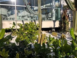 Diseño de jardines y terrazas Balcones y terrazas de estilo mediterráneo de RAM Carpinteria y Proyectos Mediterráneo