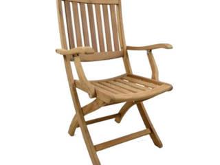 Palmiye Koçak Sandalye Masa Koltuk Mobilya Dekorasyon – İroko Sandalye:  tarz