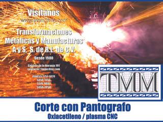 Industrial style houses by Transformaciones Metalicas y Manufacturas A y S, S.de R. L. de C. V. Industrial