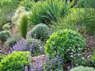 JARDIN EN ESSONNE - Un jardin romantique, à l'anglaise Jardin moderne par Sophie Durin | Empreinte Paysagère Moderne
