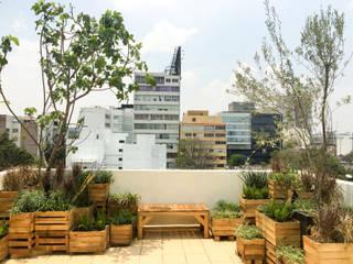 Boceto Arquitectos Paisajistas Balcones y terrazas de estilo moderno Madera
