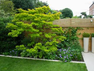 Contemporary family garden Modern garden by Abigail Hazell Landscape and Garden Design Modern
