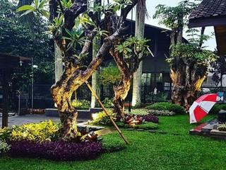 根據 Tukang Taman Surabaya - Tianggadha-art 熱帶風