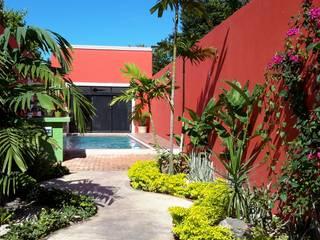 Casa del Jaguar Casas modernas de Grupo Inmobiliario Dofer Moderno