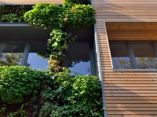 IMMEUBLE COLLECTIF ECOLOGIQUE BIOCLIMATIQUE (Bruxelles): Habitats collectifs de style  par Atelier Espace Architectural Marc Somers