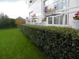 Камерный сад. Сад в стиле минимализм от Мастерская ЛАНДШАФТ ЭЛИТ Минимализм