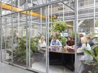 Entornos Corporativos de Bienestar Estudios y despachos de estilo escandinavo de Simbiotia Escandinavo