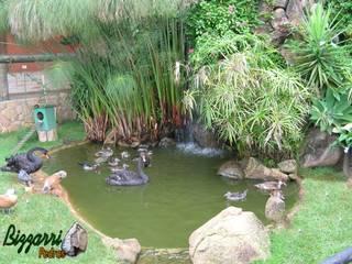 Пруд в саду в . Автор – Bizzarri Pedras