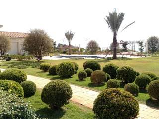 Jardim Clássico : Jardins de fachadas de casas  por Marcelo Marttins Arquitetura Paisagística