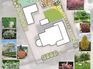 План озеленения: Сады в . Автор – Марина Михайлик