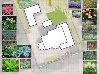 План напочвенных покровов: Сады в . Автор – Марина Михайлик