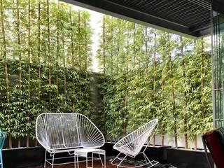 Jardineras de fibra de vidrio decoradas con Bambus artificiales de 5 metros de Inova Decora Plantas Artificiales Moderno Madera Acabado en madera