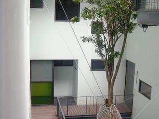 โดย Ambiente Arquitectos Asociados, S.A de C.V. มินิมัล