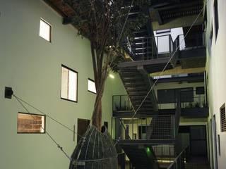Árbol suspendido Jardines de estilo minimalista de Ambiente Arquitectos Asociados, S.A de C.V. Minimalista