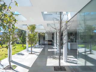Casa JH Edificios de oficinas de estilo minimalista de HW Studio Arquitectos Minimalista