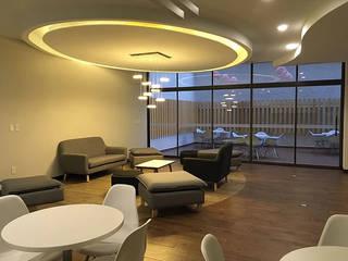 Oficinas Schwabe Estudios y despachos modernos de BODIN BODIN ARQUITECTOS Moderno