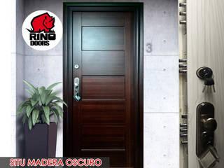 Puertas principales de estilo  por Puertas y Blindajes, Moderno