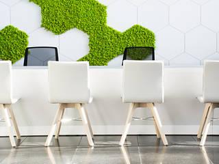 Przestrzenie biurowe i punkt obsługi – projekt wnętrz biurowych z wertykalnym ogrodem SZARA / studio Biurowce Biały
